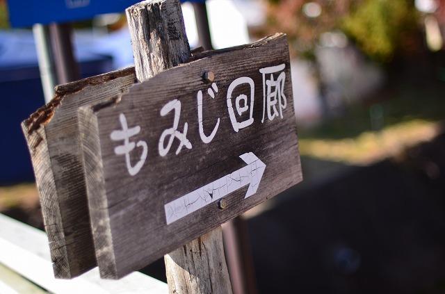 秋満喫!紅葉狩り(^^)/
